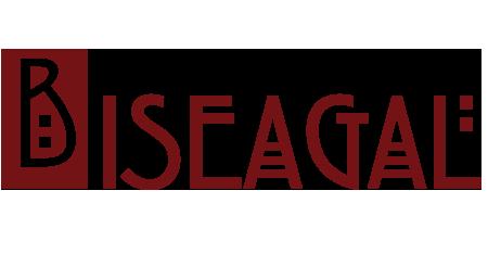 Biseagal Logo